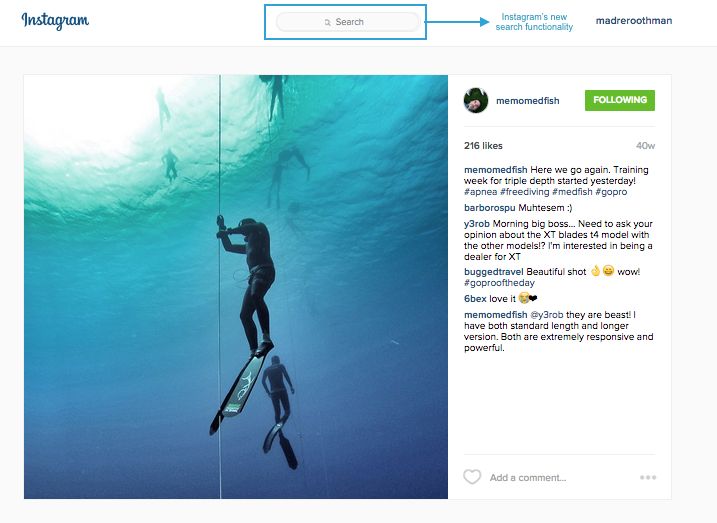 Instagram's new search fuctionality on Desktop
