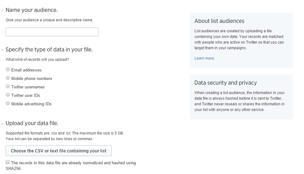 Twitter's Custom Audience Interface